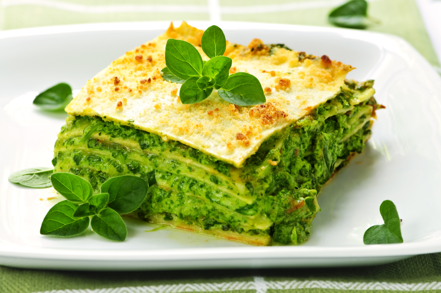 Serving of fresh baked vegetarian spinach lasagna on a plate