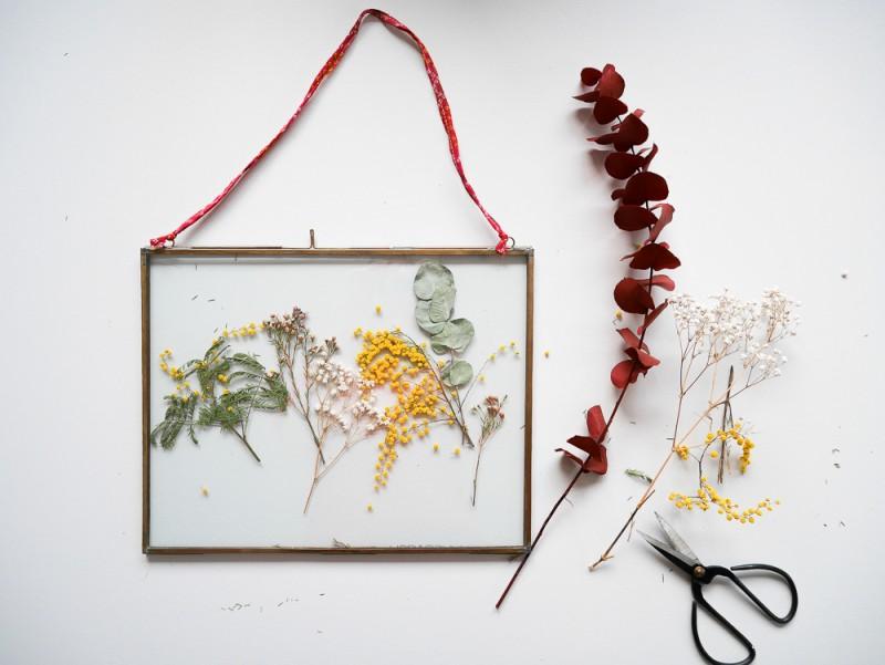 Un herbier encadré à accrocher au mur