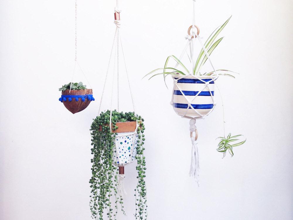 Réaliser une plante suspendue