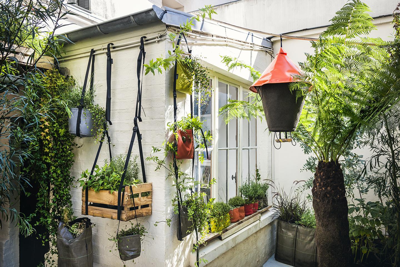 Plantes suspendues pour un balcon en ville