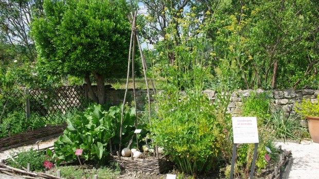 Salagon Jardin médiéval