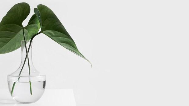 S'essayer au minimalisme