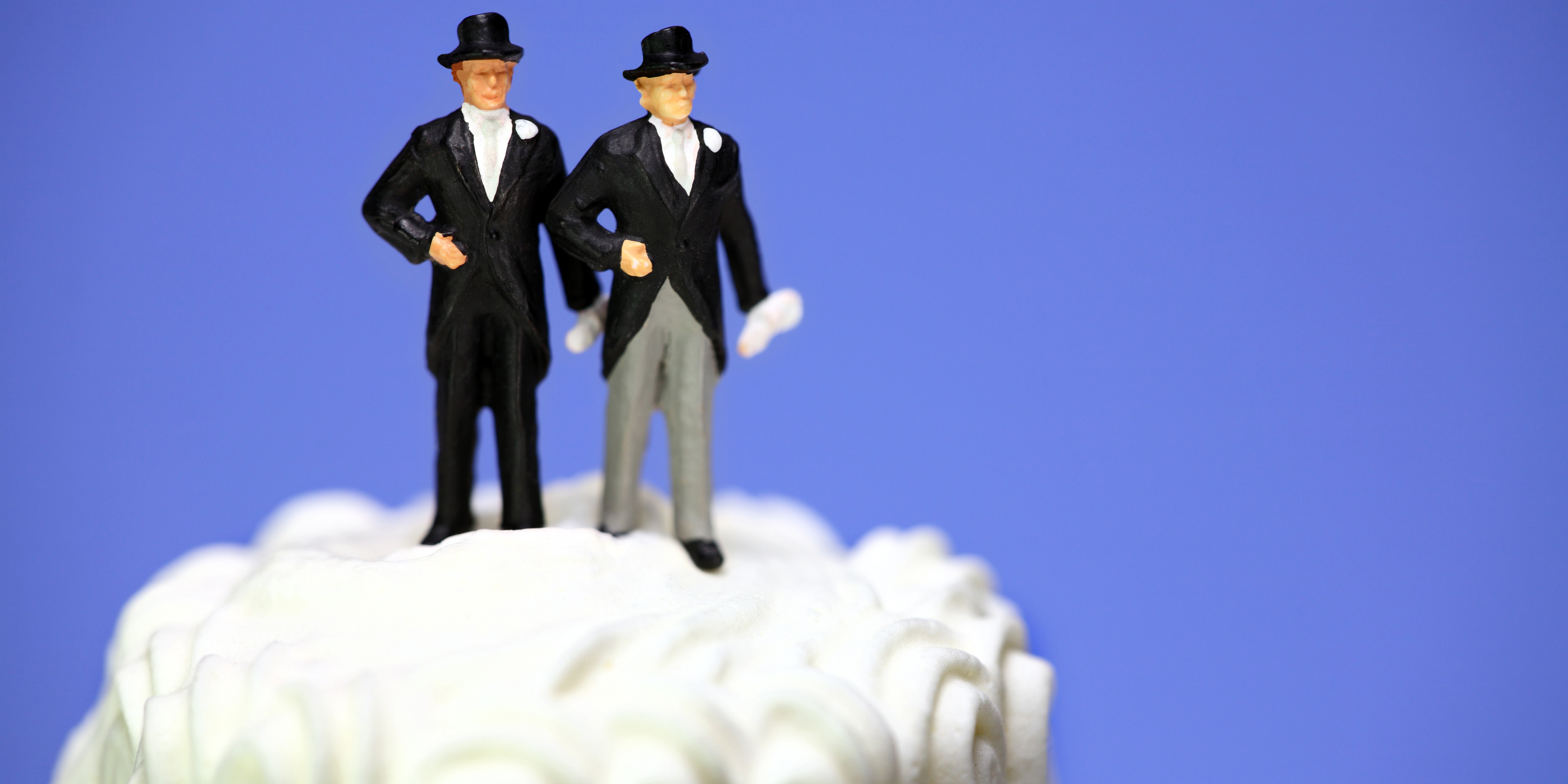 TOPPER CAKE GAY