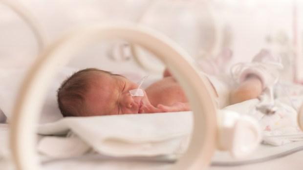 Bébé dans une couveuse