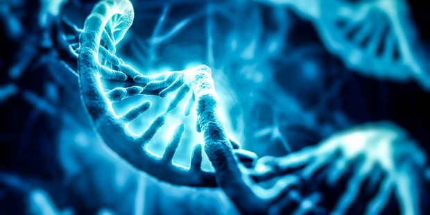 DIGITAL DNA
