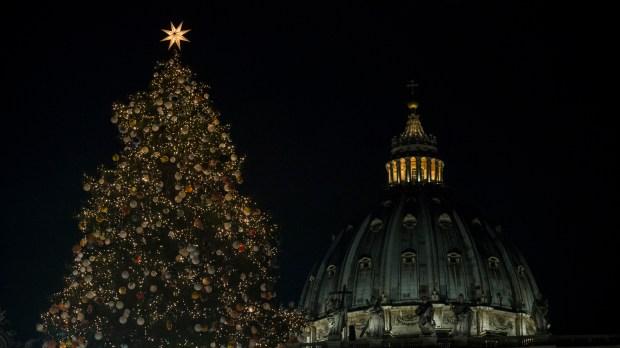 VATICAN; CHRISTMAS; TREE;