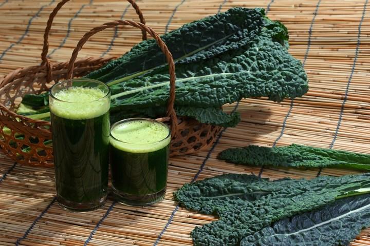 Kale or leaf cabbage