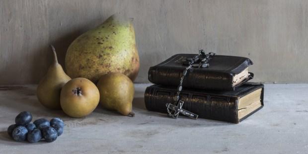 FRUITS BIBLE