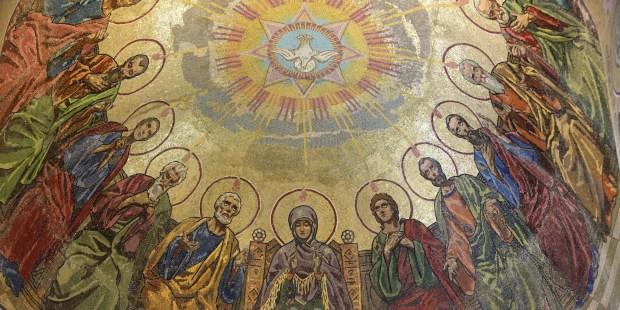 APOSTLES DOVE