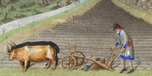 FARMER RICH HOURS