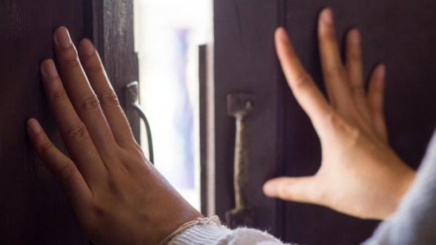 DOOR HANDS
