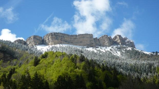 MOUNTAIN CHAMECHAUDE