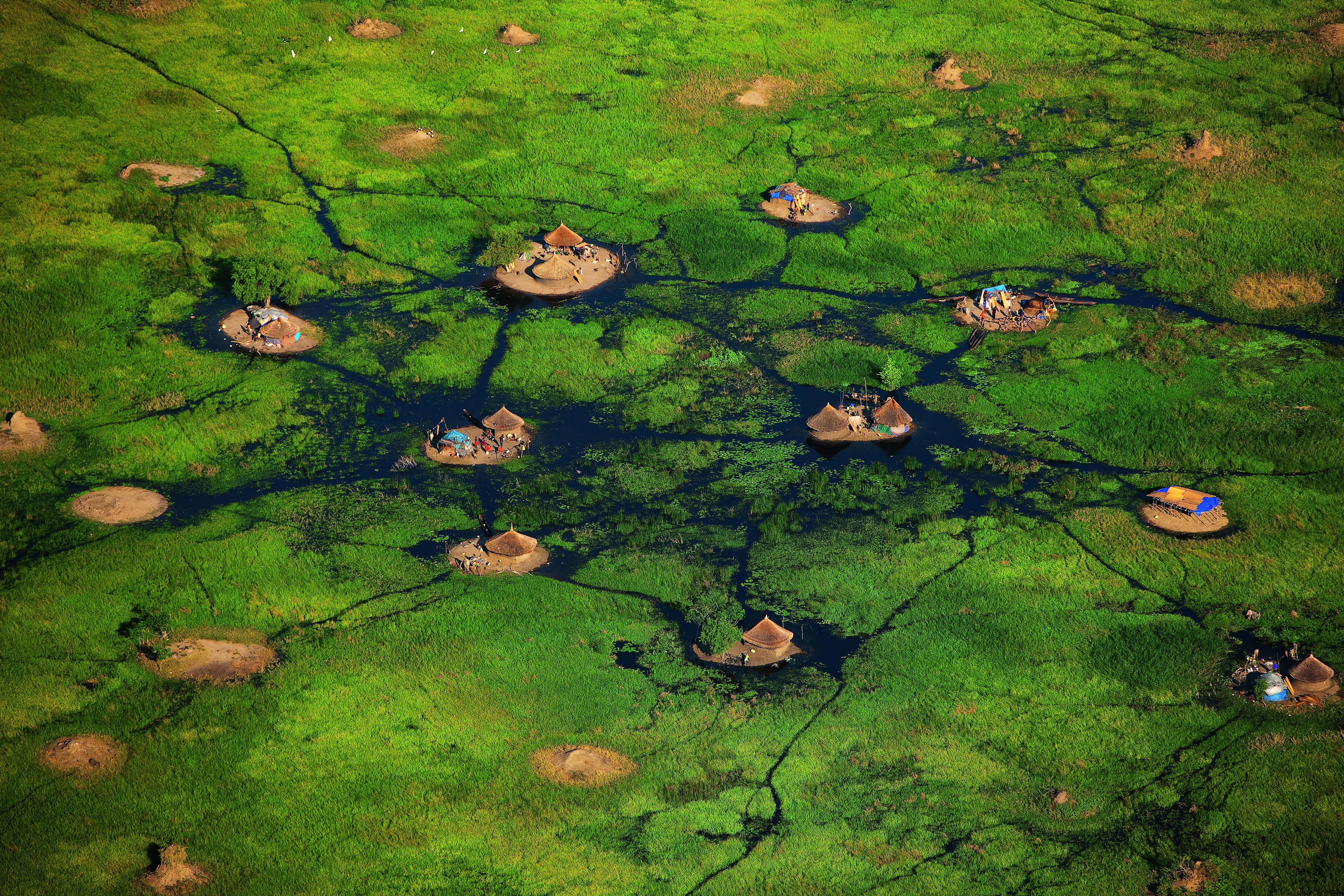 YANN ARTHUS-BERTRAND Village in the White Nile swamps near Bor, Jonglei, South Sudan (6°22' N – 31°32' E).