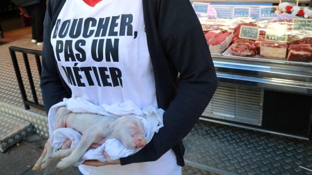 BUTCHER ABOLITION