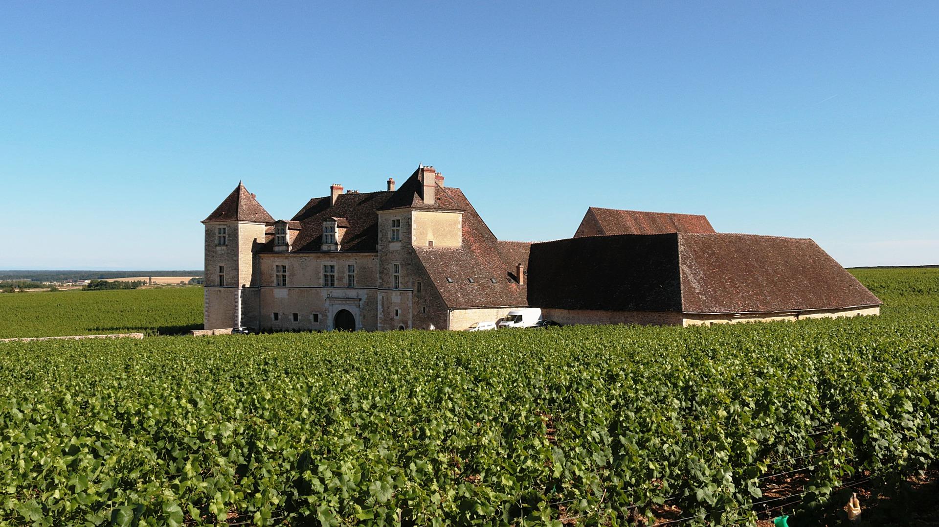 web2-wine-bourgogne-chateau-de-clos-de-vougeot-374419_1920.jpg