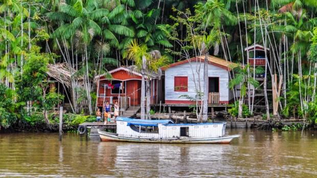 Fôret amazonie