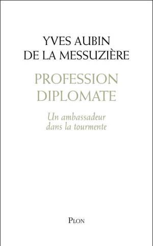 web2-profession-diplomate-plon.jpg