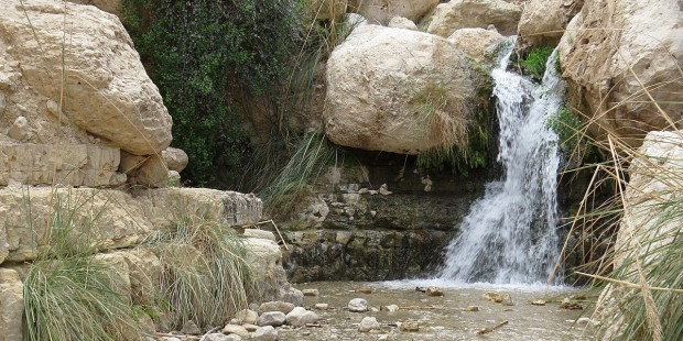 Cascades d'Ein Gedi