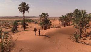 Les Focolari en Algérie