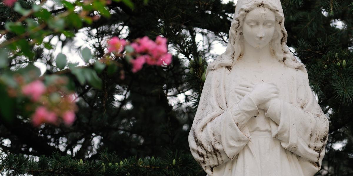 Virgin Mary flowers