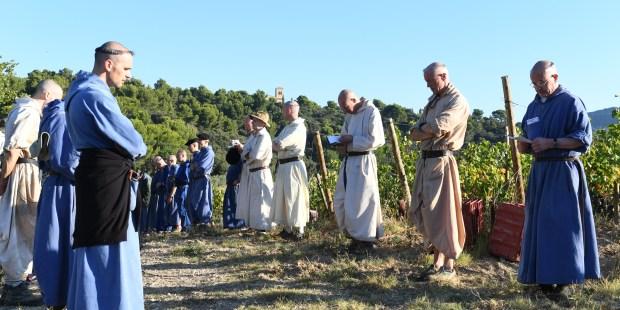 «Les Vignerons du Ciel», entre Rhône et Provence